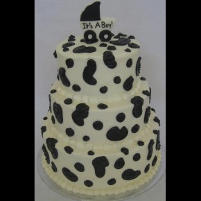 Dalmatian Baby Shower